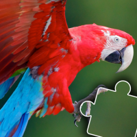 Download Kids animal jigsaw puzzles 2021.50 APK MOD (Unlimited Everything)
