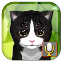 Download Talking Kittens virtual cat that speaks, take care 0.6.7 APK PRO (Unlimited Everything)