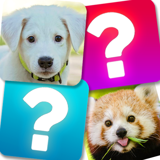 Memory Game: Animals 5.1 APK MOD (Unlimited Everything)