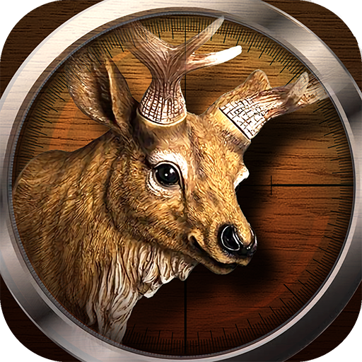 The Hunting World – 3D Wild Shooting Game 1.0.6 APK MOD (Unlimited Everything)